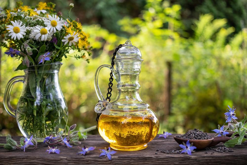 bienfaits huile de bourrache